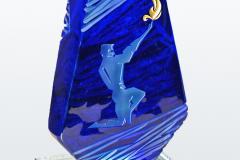 01_Aleksandr-Savchuk-Award-ICAT-2015